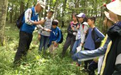 7年生 森のフィールドワーク